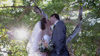 StarFruit Productions-Tampa Videographers